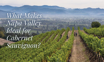What makes Napa Valley ideal for Cabernet Sauvignon?