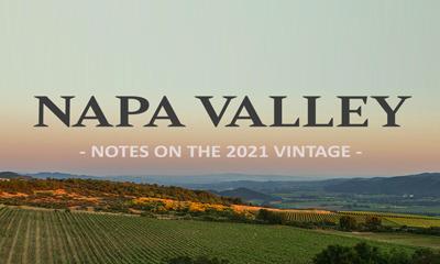 Napa Valley 2021 Vintage Notes