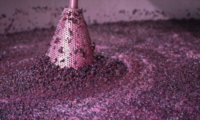 How Cabernet Sauvignon is Made