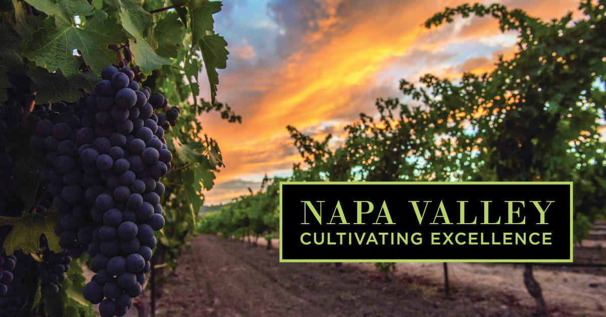 Receive A Free Napa Valley Wine Food Pairing Guide When You Sign Up For Email Updates About The Napa Valley