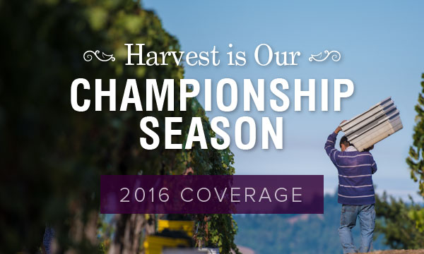 Our Harvest Championship Season is underway
