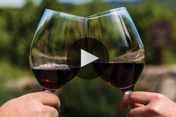 Napa Valley Cabernet Sauvignon: A Global Perspective