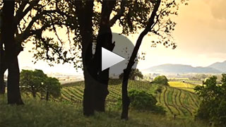 Napa Green: A History of Sustainability