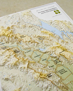 Online Store - Us raised relief topographical map